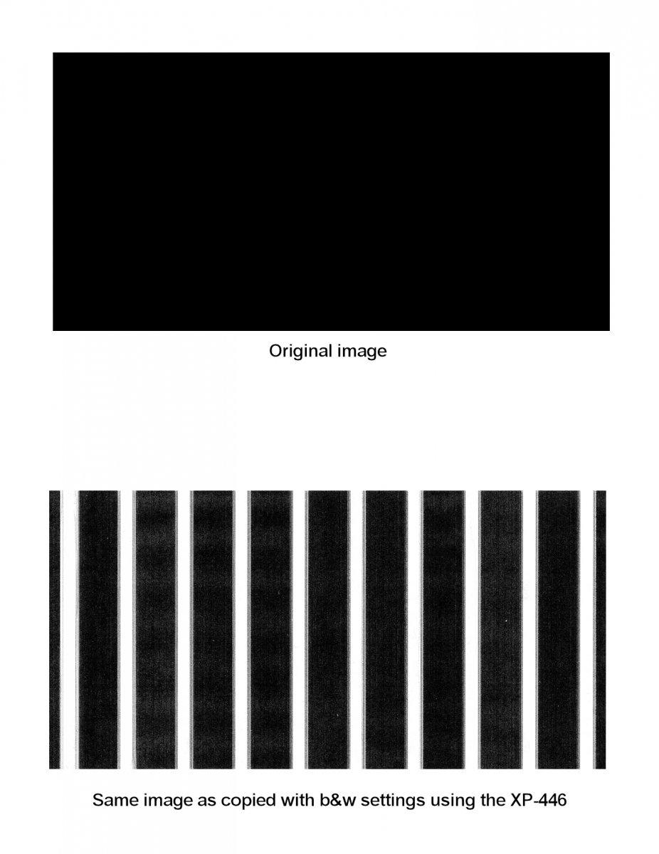 Epson xp446 copy problem.jpg